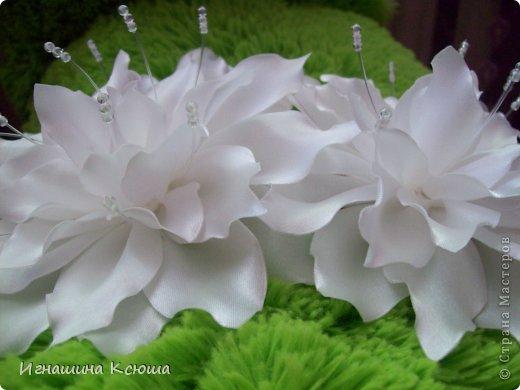 Цветы на резинках  d--18 см фото 1