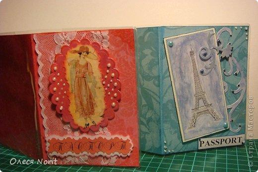 Две мои первые обложечки на паспорт фото 1