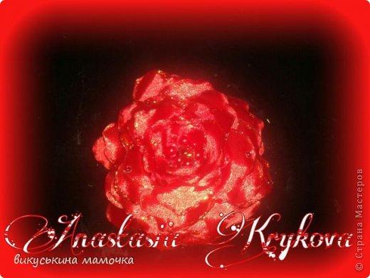 заказали просто цветок красного цвета.... фото 1