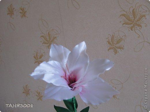здравствуйте дорогие жители СТРАНЫ МАСТЕРОВ!!!!!!!!!!!!!!  хочу с вами поделиться моими лилиями (я очень люблю этот цветок) .  и сделала три разных - этот с малиновыми прожилками. фото 1