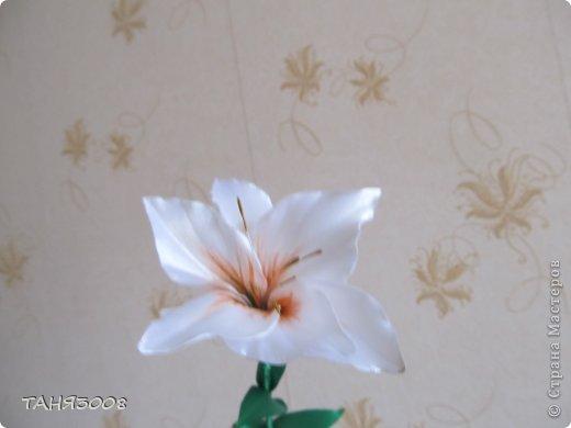 здравствуйте дорогие жители СТРАНЫ МАСТЕРОВ!!!!!!!!!!!!!!  хочу с вами поделиться моими лилиями (я очень люблю этот цветок) .  и сделала три разных - этот с малиновыми прожилками. фото 5