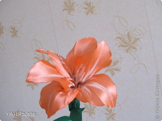 здравствуйте дорогие жители СТРАНЫ МАСТЕРОВ!!!!!!!!!!!!!!  хочу с вами поделиться моими лилиями (я очень люблю этот цветок) .  и сделала три разных - этот с малиновыми прожилками. фото 3