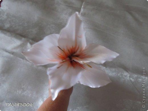 здравствуйте дорогие жители СТРАНЫ МАСТЕРОВ!!!!!!!!!!!!!!  хочу с вами поделиться моими лилиями (я очень люблю этот цветок) .  и сделала три разных - этот с малиновыми прожилками. фото 6