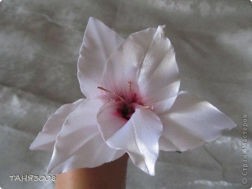 здравствуйте дорогие жители СТРАНЫ МАСТЕРОВ!!!!!!!!!!!!!!  хочу с вами поделиться моими лилиями (я очень люблю этот цветок) .  и сделала три разных - этот с малиновыми прожилками. фото 2