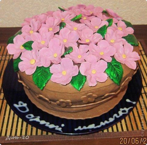 Торт Смешарики фото 7