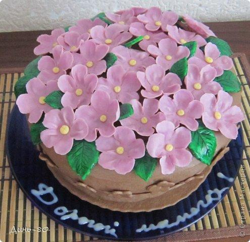 Торт Смешарики фото 8