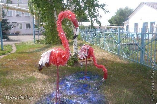 """Вот и готовы мои фламинго.Спасибо за вдохновение и мк Алене Зиновьевой   у нее сделаны аисты ,орел .....А я подумала и остановилась на этих красивых птицах.запаслась бутылкам,канистрами и остальным """"хламом""""  и вот результат!!!!!!!!!!!! фото 1"""