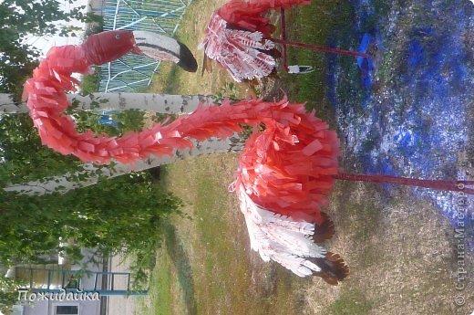 """Вот и готовы мои фламинго.Спасибо за вдохновение и мк Алене Зиновьевой   у нее сделаны аисты ,орел .....А я подумала и остановилась на этих красивых птицах.запаслась бутылкам,канистрами и остальным """"хламом""""  и вот результат!!!!!!!!!!!! фото 2"""