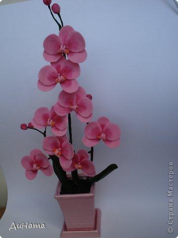 """кто-то """"подсел"""" на розы,а я на орхидеи,все пытаюсь слепить более натуральные,но получаются одинаковые,может это и есть """"почерк"""")))))) фото 3"""