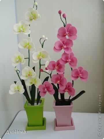 """кто-то """"подсел"""" на розы,а я на орхидеи,все пытаюсь слепить более натуральные,но получаются одинаковые,может это и есть """"почерк"""")))))) фото 5"""
