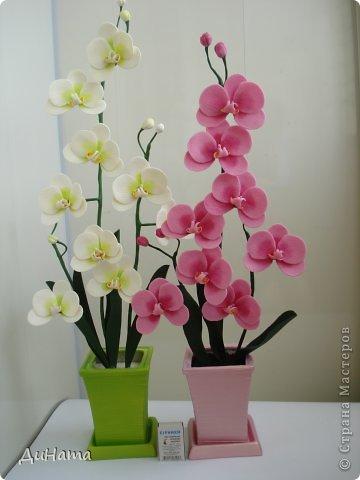 """кто-то """"подсел"""" на розы,а я на орхидеи,все пытаюсь слепить более натуральные,но получаются одинаковые,может это и есть """"почерк"""")))))) фото 7"""