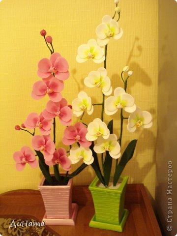 """кто-то """"подсел"""" на розы,а я на орхидеи,все пытаюсь слепить более натуральные,но получаются одинаковые,может это и есть """"почерк"""")))))) фото 8"""