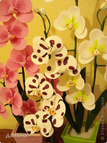 """кто-то """"подсел"""" на розы,а я на орхидеи,все пытаюсь слепить более натуральные,но получаются одинаковые,может это и есть """"почерк"""")))))) фото 10"""