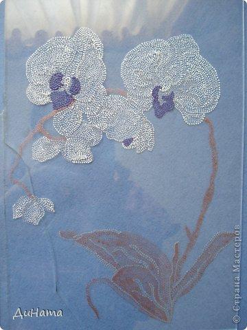 """кто-то """"подсел"""" на розы,а я на орхидеи,все пытаюсь слепить более натуральные,но получаются одинаковые,может это и есть """"почерк"""")))))) фото 11"""