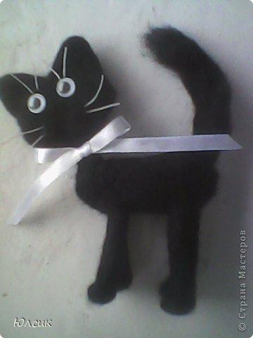 Чёрный кот с белым бантом