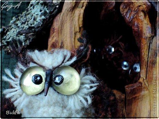 Всем привет и наилучшие пожелания!  Сегодня, как видно из заголовка, здесь сова!  Мудрейшая птица на свете - сова.  Все слышит,  Но очень скупа на слова.  Чем больше услышит -  Тем меньше болтает.  Ах, этого многим из нас  Не хватает!  (Б.Захадер)              фото 4