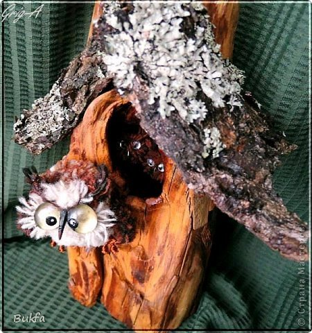 Всем привет и наилучшие пожелания!  Сегодня, как видно из заголовка, здесь сова!  Мудрейшая птица на свете - сова.  Все слышит,  Но очень скупа на слова.  Чем больше услышит -  Тем меньше болтает.  Ах, этого многим из нас  Не хватает!  (Б.Захадер)              фото 6