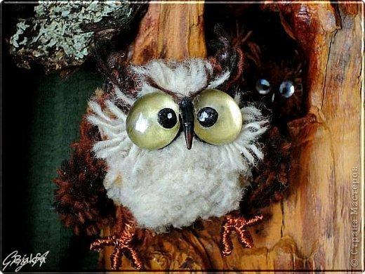 Всем привет и наилучшие пожелания!  Сегодня, как видно из заголовка, здесь сова!  Мудрейшая птица на свете - сова.  Все слышит,  Но очень скупа на слова.  Чем больше услышит -  Тем меньше болтает.  Ах, этого многим из нас  Не хватает!  (Б.Захадер)              фото 2