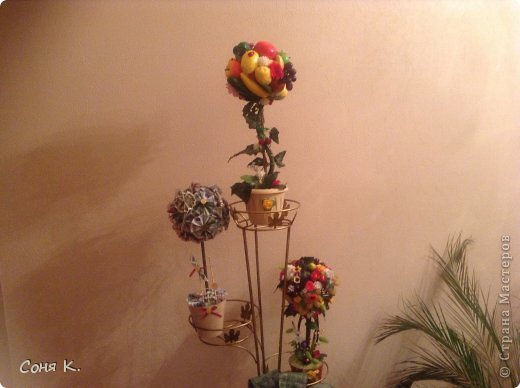 Дорогие гости выношу на Ваш суд новые фруктово-ягодные деревья. фото 1