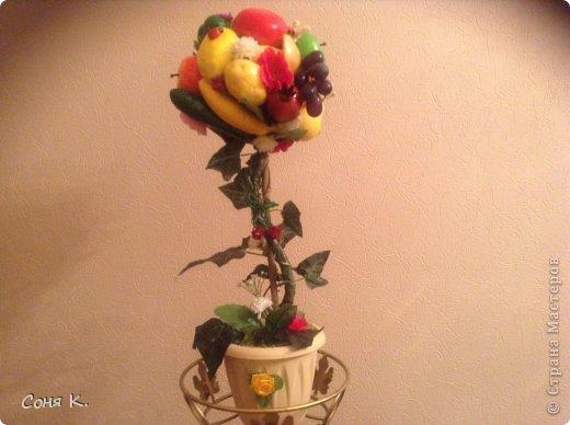 Дорогие гости выношу на Ваш суд новые фруктово-ягодные деревья. фото 2