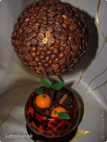 """Мое самое """"долгое"""" дерево. Просили ОРАНЖЕВОЕ кофейное деревце еще на прошлый новый год (благо подружка особо не торопила), а в итоге сделала ко дню рождения (апрель 2013). Очень долго при этом искала оранжевый декор:)))  фото 3"""
