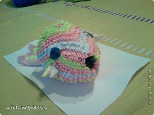 Рыбка моя фото 1