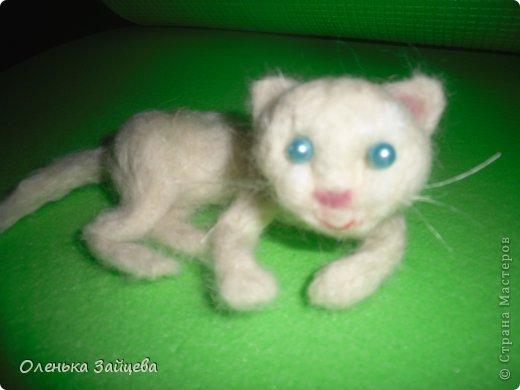 Это моя первая попытка свалять что то кроме дурака:) не знаю насколько похоже получилось, но это котенок:) фото 2