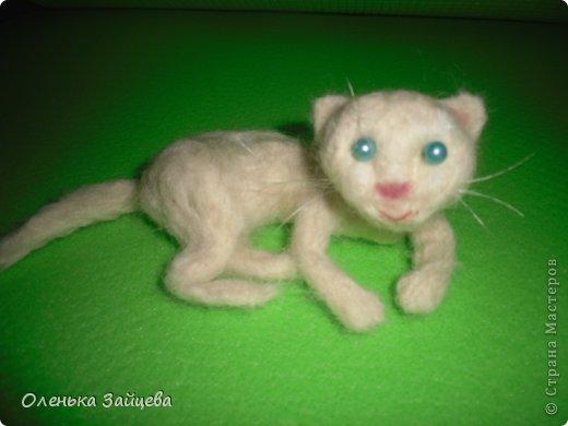 Это моя первая попытка свалять что то кроме дурака:) не знаю насколько похоже получилось, но это котенок:) фото 1