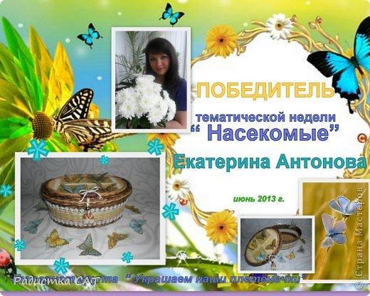Бабочки летают,  бабочки... фото 9