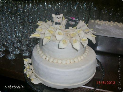 Тили тили тесто жених и невеста!!! Мастичные котики для торта, правда не съедобные)))остались на память мужу и жене! фото 2