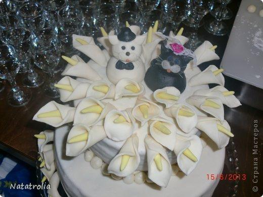 Тили тили тесто жених и невеста!!! Мастичные котики для торта, правда не съедобные)))остались на память мужу и жене! фото 3