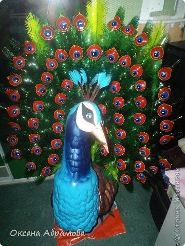 """Мое увлечение изделиями из пластиковых бутылок началось с пальм. Я случайно увидела МК и решила повторить. Вот так выглядит мой """"Пальмовый рай"""". фото 10"""