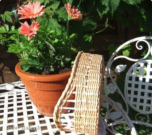 Привет дорогие жители любимой Страны  и гости моей страницы !!! Опять я с плетёнками- в первый раз плела крашенными трубочками- а красила тем, что нашла дома, краска для наружных  деревянный поверхностей ( красили забор)...вроде-бы получилось... фото 4