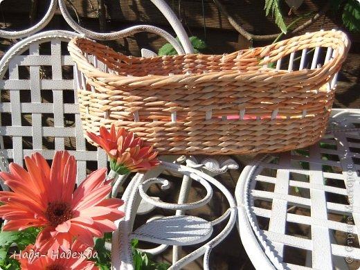 Привет дорогие жители любимой Страны  и гости моей страницы !!! Опять я с плетёнками- в первый раз плела крашенными трубочками- а красила тем, что нашла дома, краска для наружных  деревянный поверхностей ( красили забор)...вроде-бы получилось... фото 2