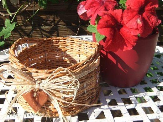 Привет дорогие жители любимой Страны  и гости моей страницы !!! Опять я с плетёнками- в первый раз плела крашенными трубочками- а красила тем, что нашла дома, краска для наружных  деревянный поверхностей ( красили забор)...вроде-бы получилось... фото 7