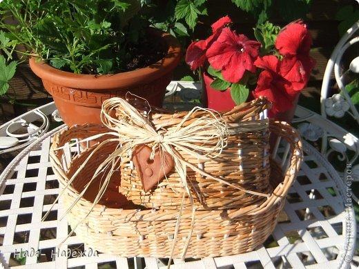 Привет дорогие жители любимой Страны  и гости моей страницы !!! Опять я с плетёнками- в первый раз плела крашенными трубочками- а красила тем, что нашла дома, краска для наружных  деревянный поверхностей ( красили забор)...вроде-бы получилось... фото 12