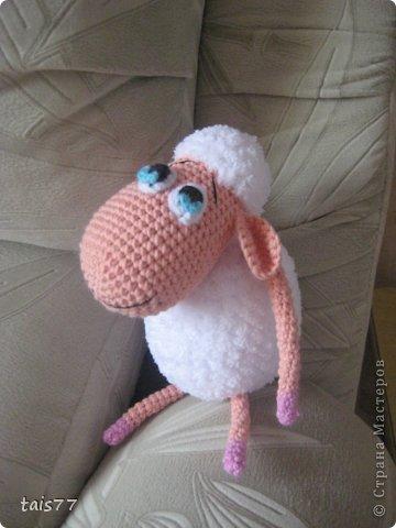 мечтательная овечка фото 1