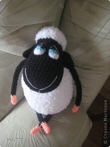 мечтательная овечка фото 3