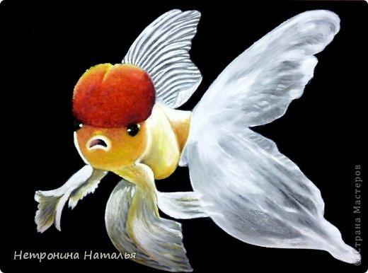 Серия картин - золотые рыбки - масло на искустсвенной замше фото 1