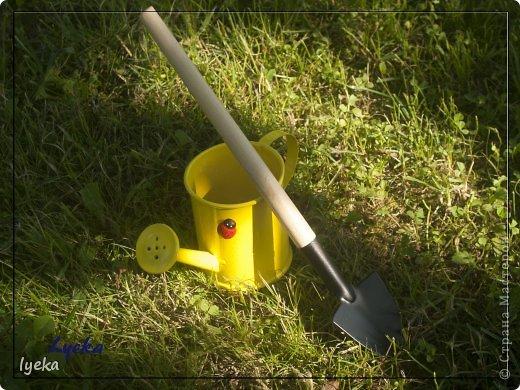 Парень веселый с золотыми руками и добрым сердцем, а также, с лопатой и лейкой! :) Копает и поливает на пятерку! фото 7