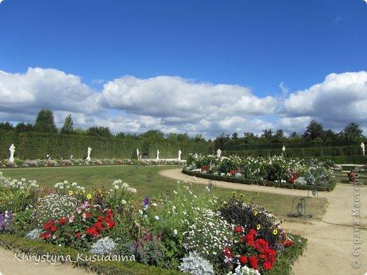 хочу в Париж, хочу в Версаль... хочу бежать куда-то вдаль. прекрасных роз насобирать и там остаться дней на пять. фото 6