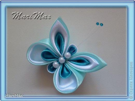 Бабочка-магнит фото 1