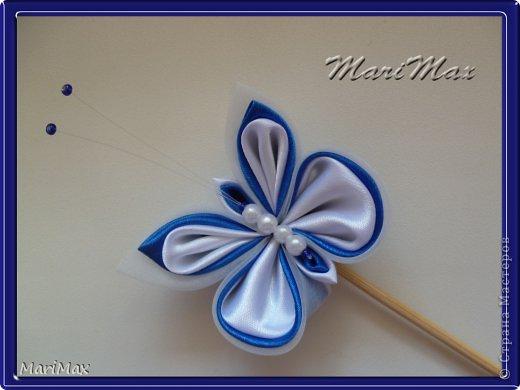 Бабочка-магнит фото 6