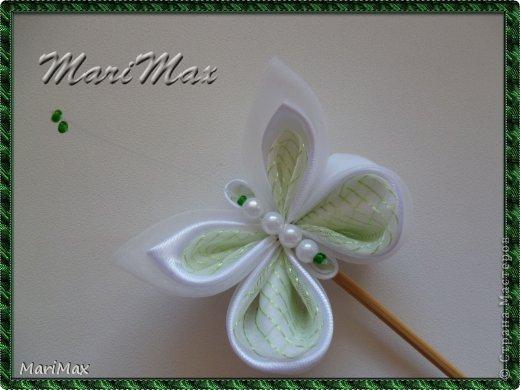 Бабочка-магнит фото 4