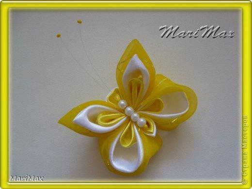 Бабочка-магнит фото 3