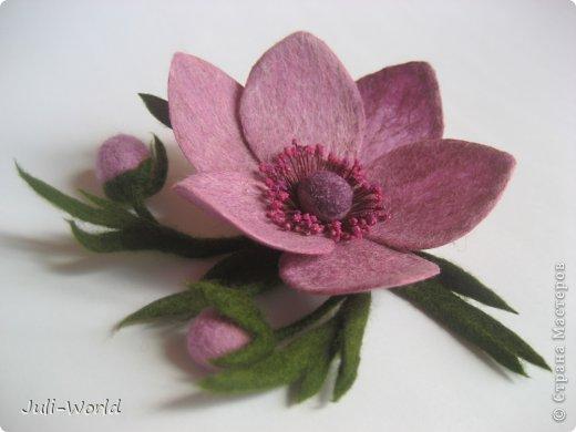 Мак, анимон, роза, яблоневый цвет. фото 9