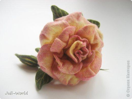 Мак, анимон, роза, яблоневый цвет. фото 7