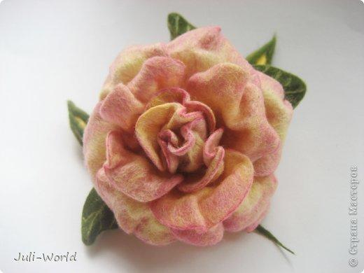 Мак, анимон, роза, яблоневый цвет. фото 5