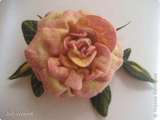 Мак, анимон, роза, яблоневый цвет. фото 6