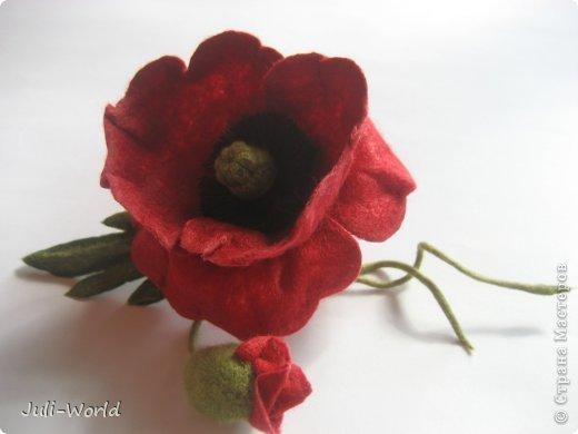 Мак, анимон, роза, яблоневый цвет. фото 1